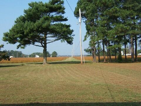 Picture of farm lane